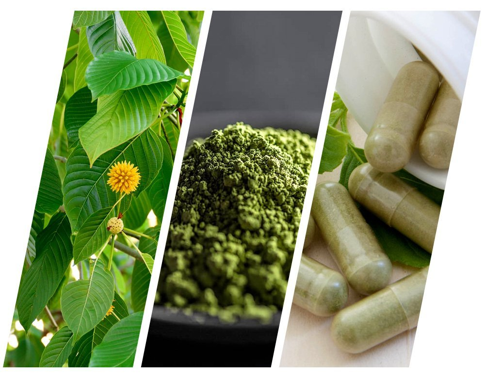 Maeng Da Kratom leaves, powder and capsules